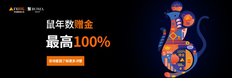 100% Bonus (In Chinese) –  FXBTG